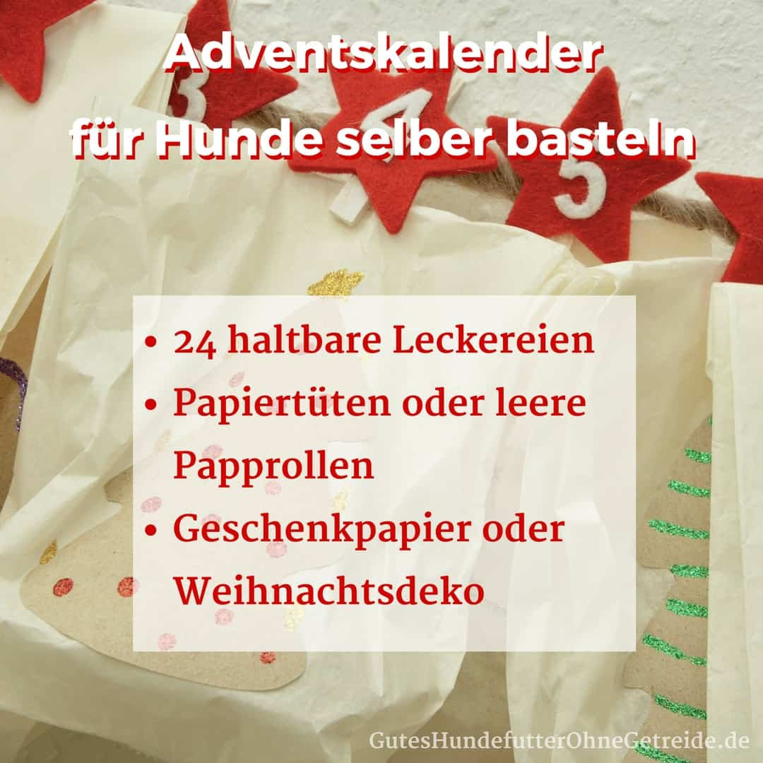 Weihnachtskalender Für Hunde.Adventskalender Für Hunde Selber Basteln Oder Kaufen