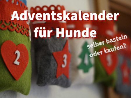 adventskalender f r hunde selber basteln oder kaufen. Black Bedroom Furniture Sets. Home Design Ideas