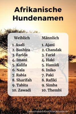 Afrikanische Namen für Hunde
