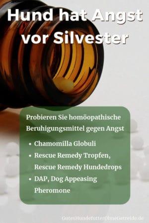 Homöopathische Beruhigungsmittel, wenn Ihr Hund Angst vor Silvester hat