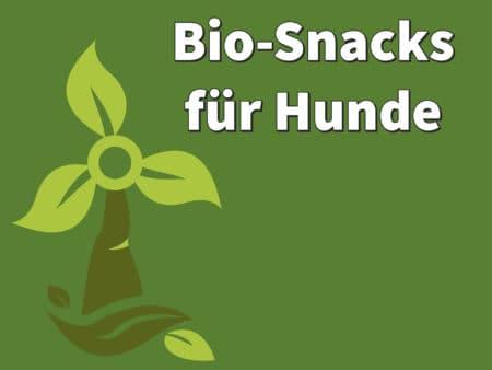 Bio-Snacks für Hunde