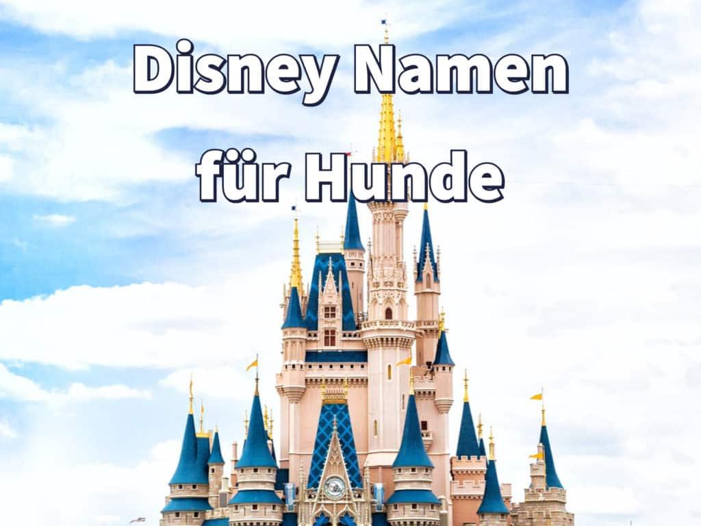 Disney Namen für Hunde