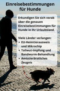 Einreisebestimmungen der Urlaubsländer für Hunde