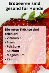 Erdbeeren sind reich an Vitamin C, Eisen, Folsäure, Kalzium, Magnesium und Kalium