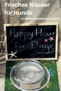 Frisches Wasser für Hunde, in vielen Restaurants üblich