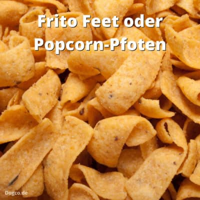 Frito Feet: Warum riechen Hundepfoten nach Popcorn?