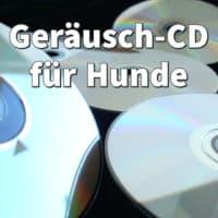 Geräusch-CD für Hunde: Keine Angst mehr vor Gewitter und Feuerwerk