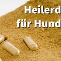 Heilerde für Hunde | Dosierung und Hilfe bei Sodbrennen, Durchfall und Kotfressen