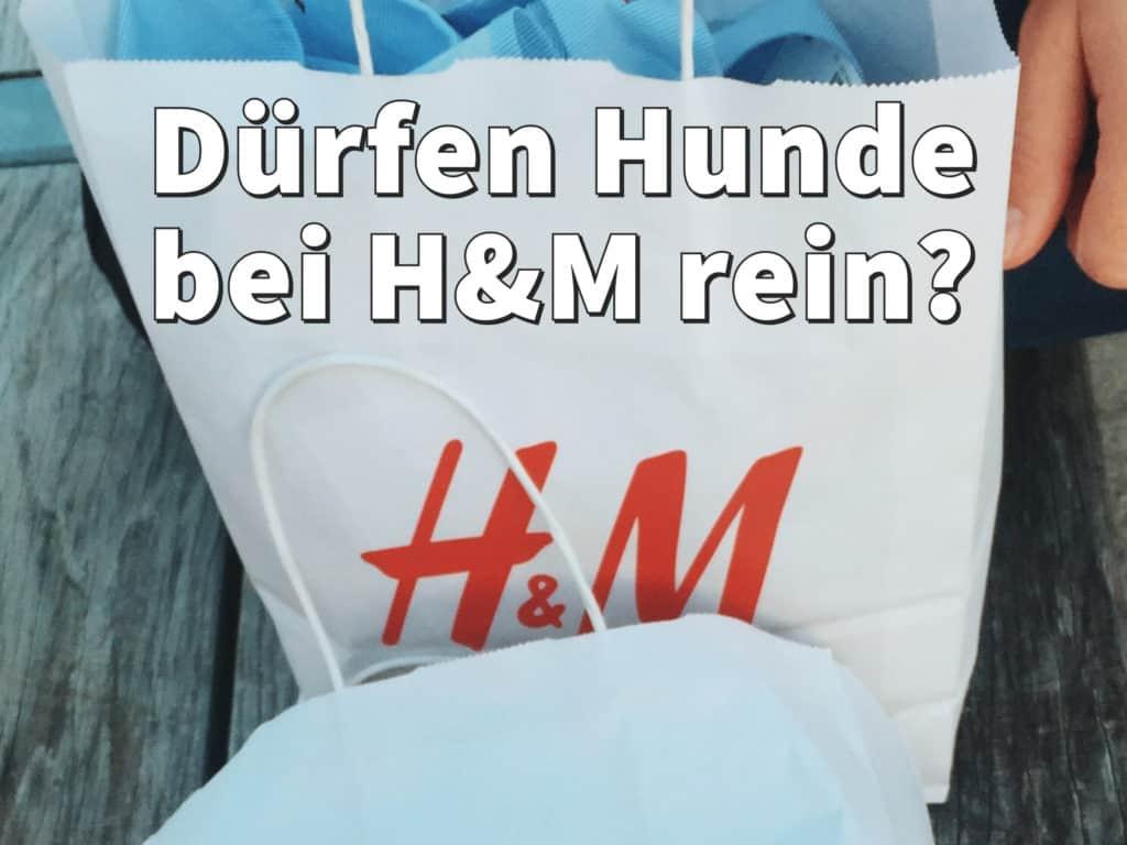 Dürfen bei H&M Hunde rein?