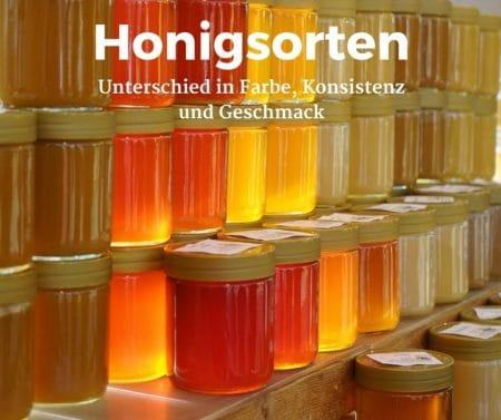 Honigsorten mit unterschiedlicher Farbe, Konsistenz und Geschmack