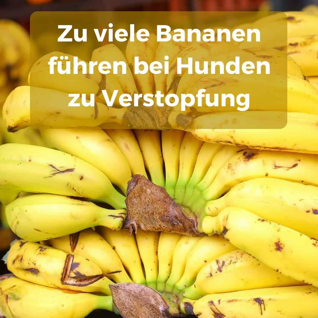 Diät essen nur Banane