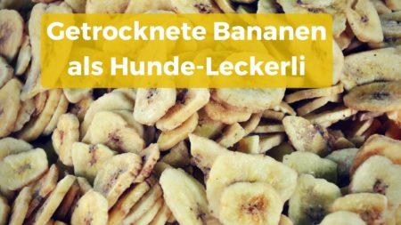 Getrocknete Bananen-Chips als Hunde-Leckerli