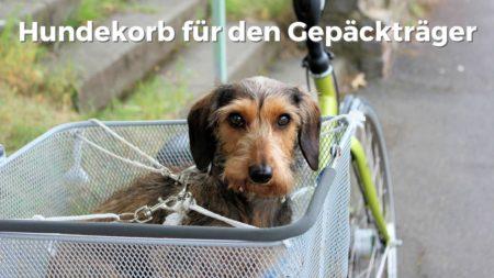 Hundekorb für den Gepäckträger