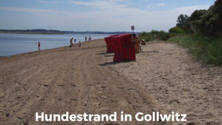 Hundestrand auf der Insel Poel, in Gollwitz