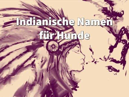 Indianische Namen für Hunde - weiblich und männlich, mit Bedeutung