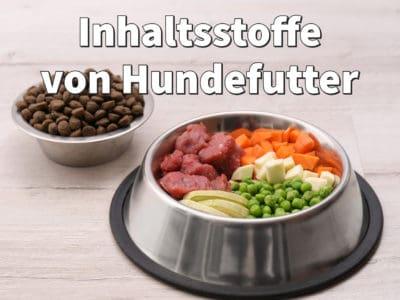 Inhaltsstoffe von Hundefutter