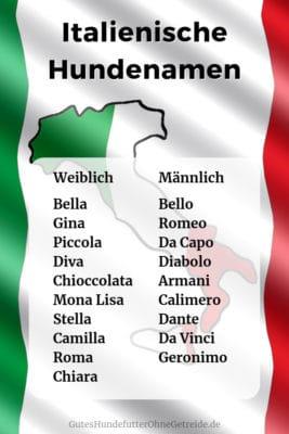 Italienische Hundenamen: weiblich und männlich mit Bedeutung