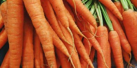 Karotten, ein gesundes Gemüse für Hunde