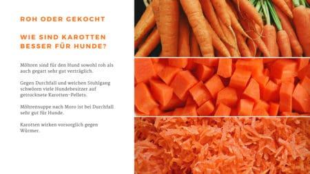 Roh oder gekocht, wie sind Karotten besser für Hunde?