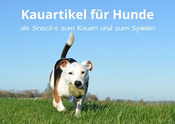 Kauartikel für Hunde, als Snacks zum Kauen und Spielen