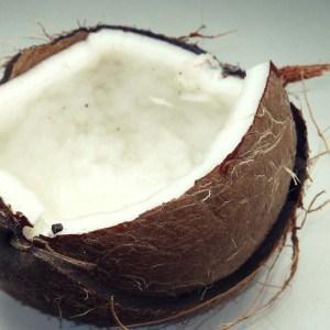 Dürfen Hunde Kokosnuss essen?