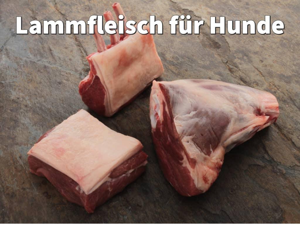 Lammfleisch für Hunde