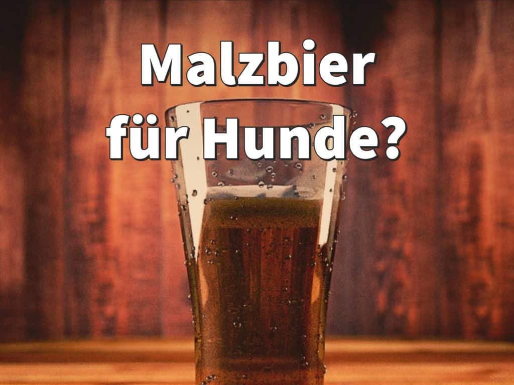 Malzbier Alkohol
