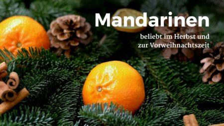 Mandarinen haben im Herbst und Winter Hochsaison