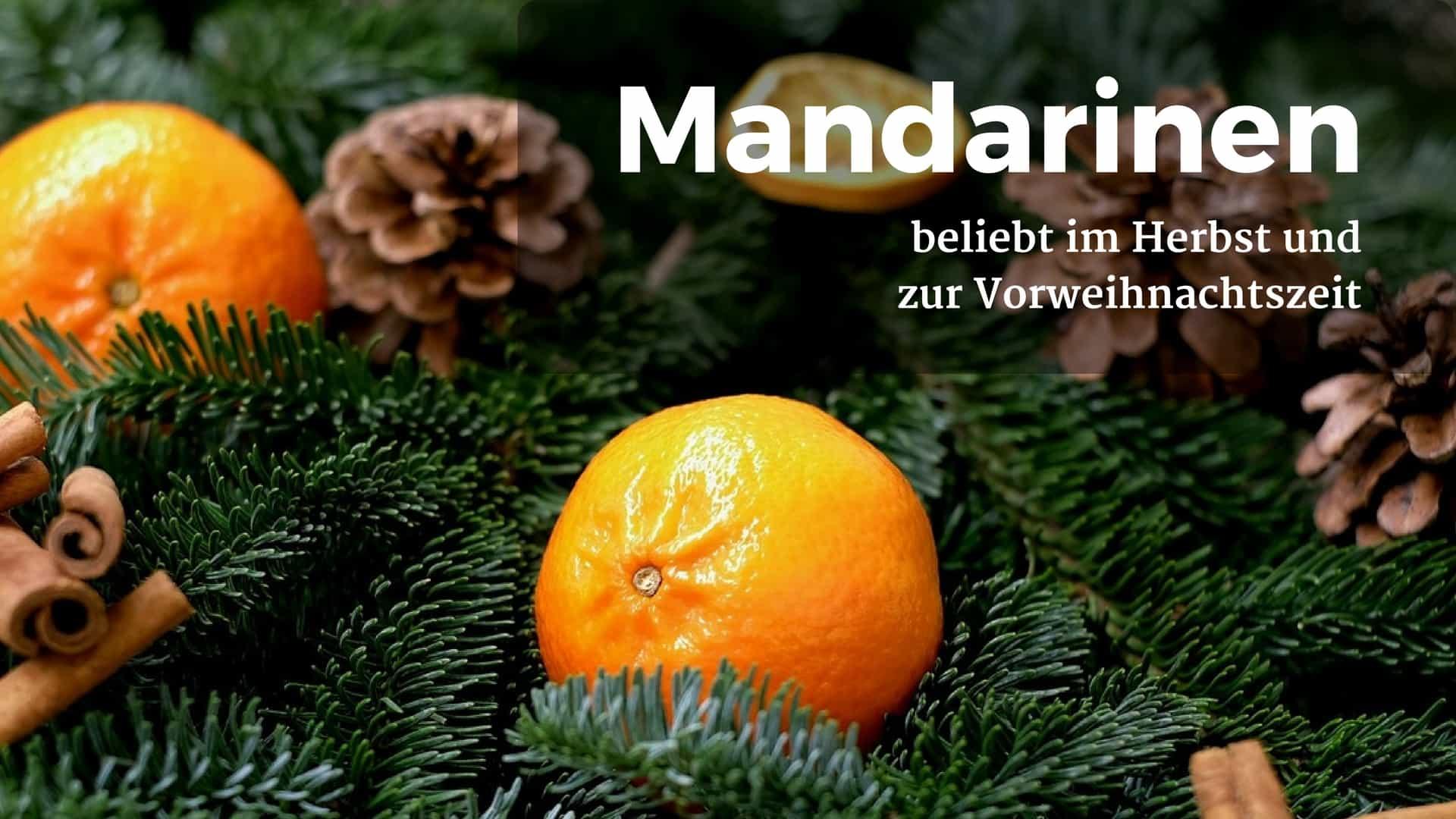 Mandarinen Durchfall