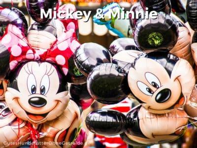 Mickey oder Minnie als Disney-Namen für Hunde