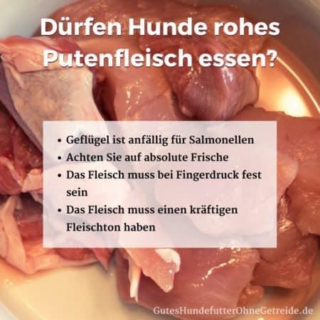 Dürfen Hunde rohes Putenfleisch essen?