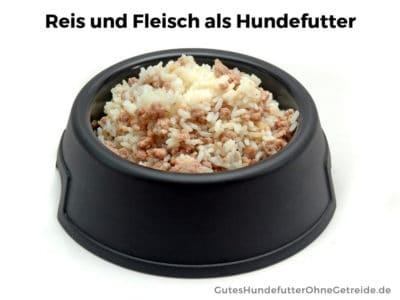 Reis und Fleisch gemnischt als Hundefutter