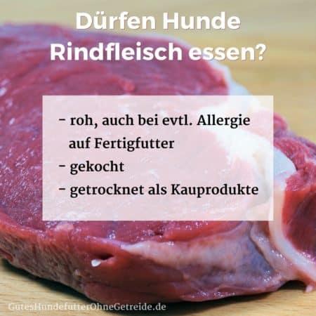 Dürfen Hunde Rindfleisch essen?
