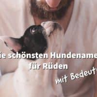 Die schönsten Hundenamen für Rüden mit Bedeutung