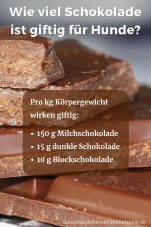 Wie viel Schokolade ist giftig für Hunde?