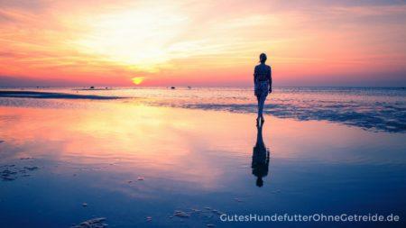 Sonnenuntergang am Strand von Gollwitz genießen