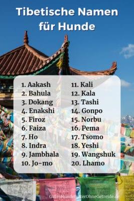 20 tibetische Namen für Hunde mit Bedeutung