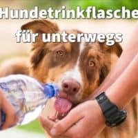 Hundetrinkflasche für unterwegs