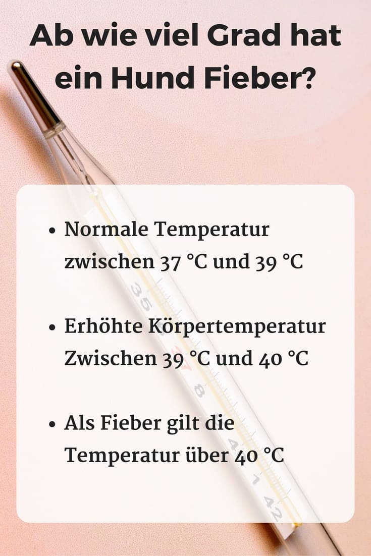 fieber temperaturen
