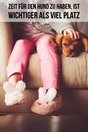 Zeit für den Hund ist wichtiger als Platzangebot